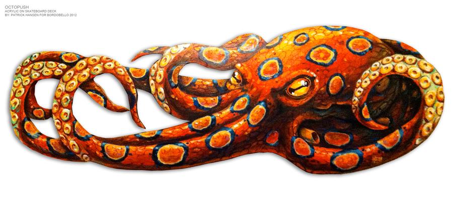 Octopush by Patrick Hansen 2012 BordoBello